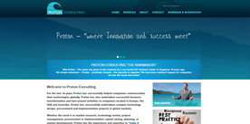 Proton Consulting